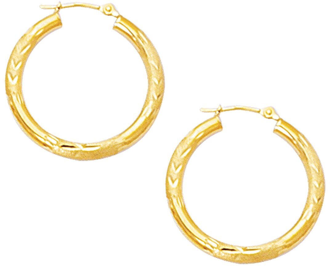 "10K Yellow Gold 3.0mm (1/8"") Textured Polished Open Round Tube Hoop Like Fancy Earrings"