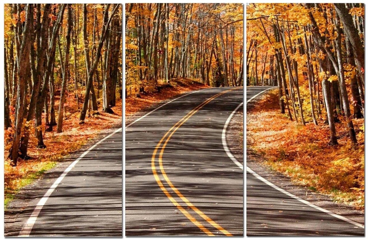 "Autumn Road Brown Foliage & Fun Curved Road 12"" x 24"" 3 Piece Canvas Print Set"