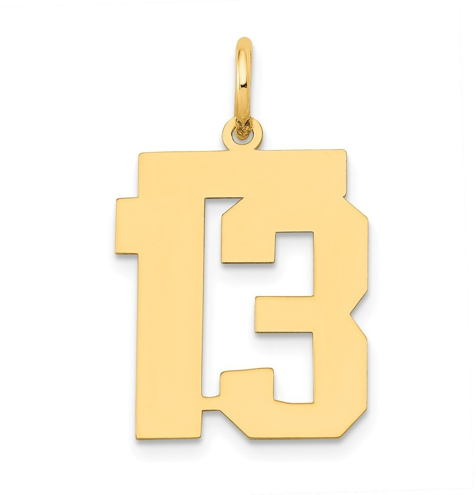 14k Yellow Gold Medium Polished Number 13 Charm Lm13