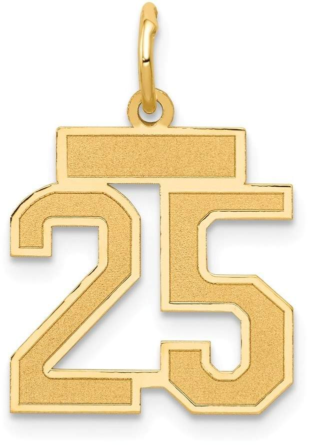 14k Yellow Gold Small Satin Number 25 Charm