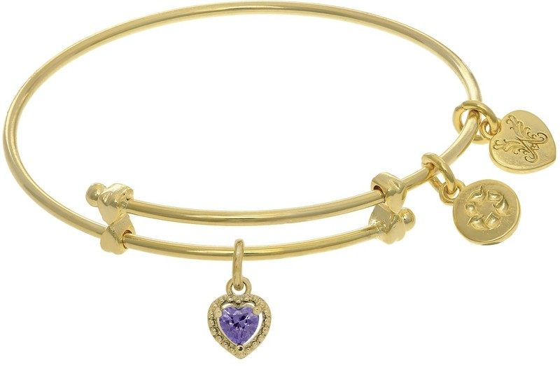 "6"" Adjustable Yellow Brass Charm February Heart CZ Birthstone Angelica Bangle Bracelet (Tween)"