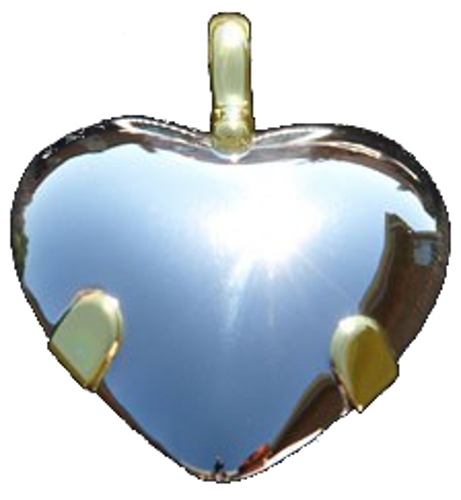 BioElectric Shield - Level 3: Sterling Silver Heart Pendant w/Gold Tabs & Extra Gold in Tip (Polished or Satin) (L32HE)