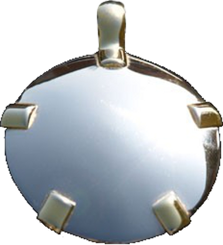 BioElectric Shield - Level 4: 14K White Gold Round Pendant w/Gold Tabs (L44W/YT-P)