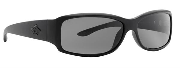 Anarchy Sunglasses - Control Carbon - DISCONTINUED