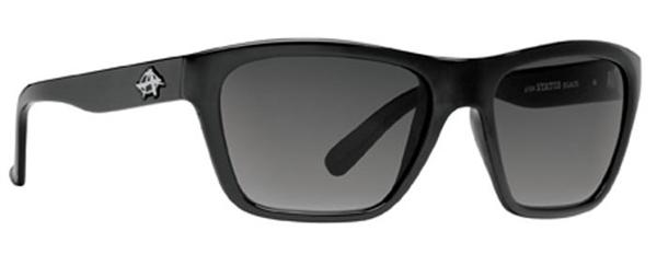 Anarchy Sunglasses - Status Black - DISCONTINUED