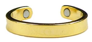 Pot o Gold - Gold Plated Magnetic Therapy Toe Ring (TR7)