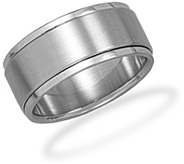 Stainless Steel Mens Spin Ring