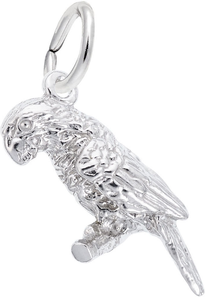Parrot Charm (Choose Metal) by Rembrandt