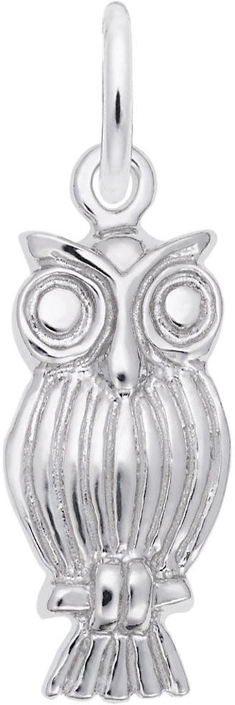 Screech Owl Charm (Choose Metal) by Rembrandt