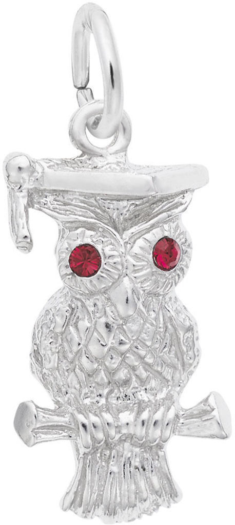 Graduation Owl Charm w/ Purple Synthetic Crystals (Choose Metal) by Rembrandt
