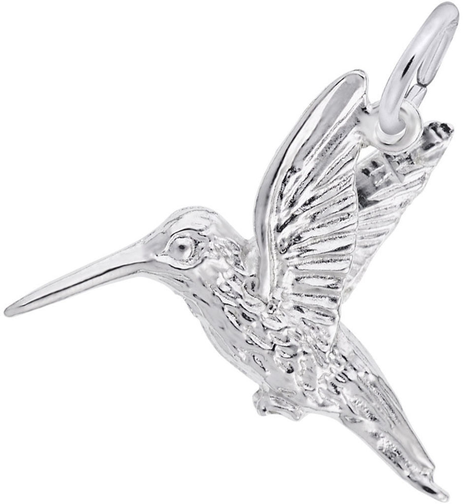 Hummingbird Charm (Choose Metal) by Rembrandt