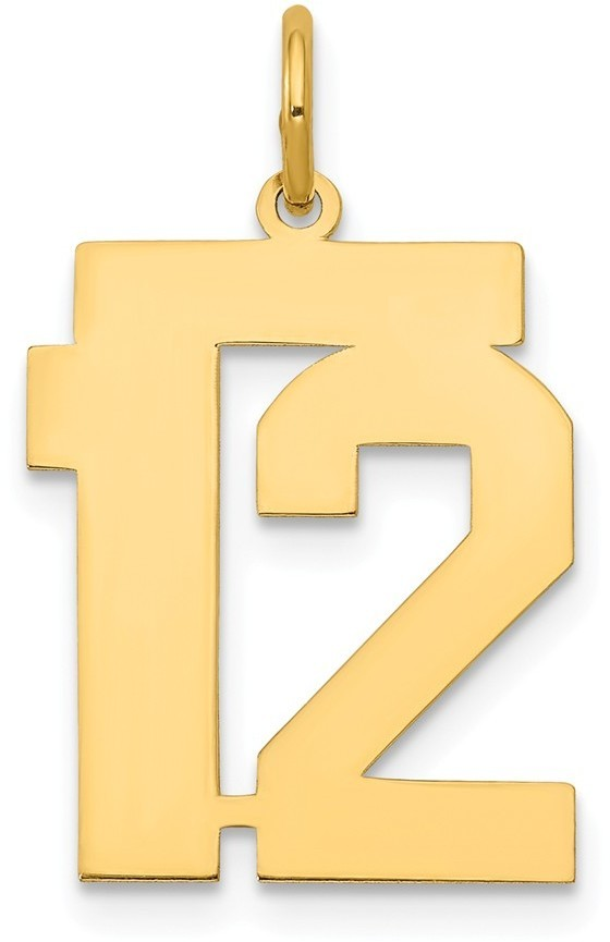 14k Yellow Gold Medium Polished Number 12 Charm Lm12