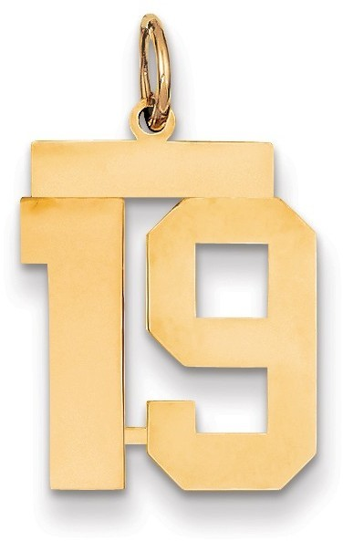 14k Yellow Gold Medium Polished Number 19 Charm Lm19