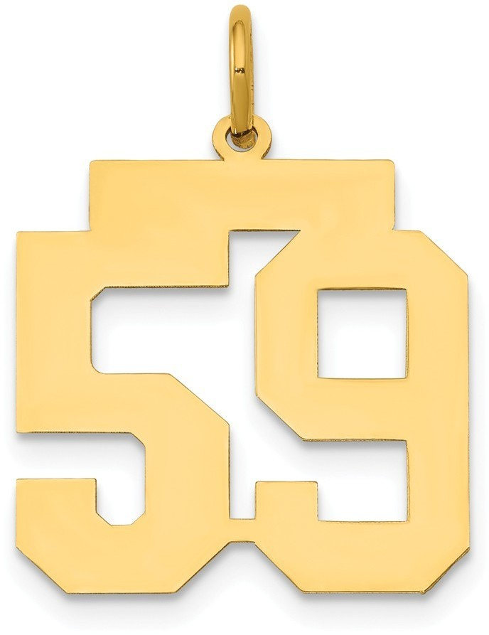 14k Yellow Gold Medium Polished Number 59 Charm Lm59