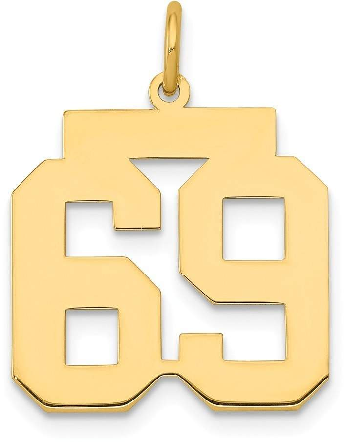 14k Yellow Gold Medium Polished Number 69 Charm Lm69