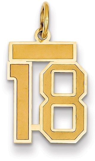 14k Yellow Gold Small Satin Number 18 Charm