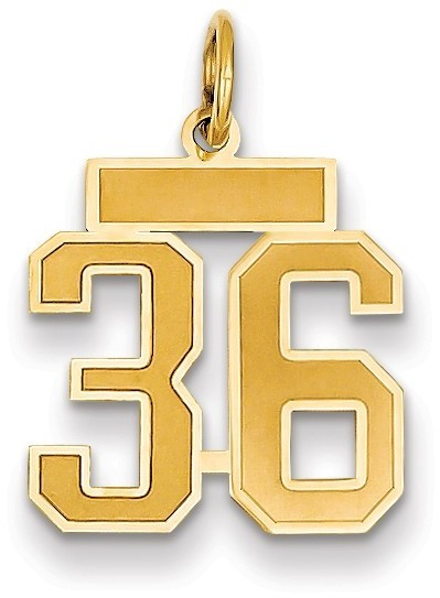 14k Yellow Gold Small Satin Number 36 Charm