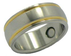 Stainless Steel Magnetic Therapy Ring (SR12)
