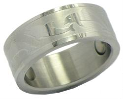 Dolphin Stainless Steel Magnetic Therapy Ring (SR5)