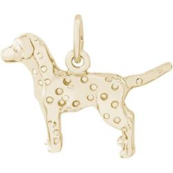 Dalmatian Charm (Choose Metal) by Rembrandt