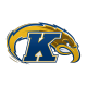 Kent State Golden Flashes Logo