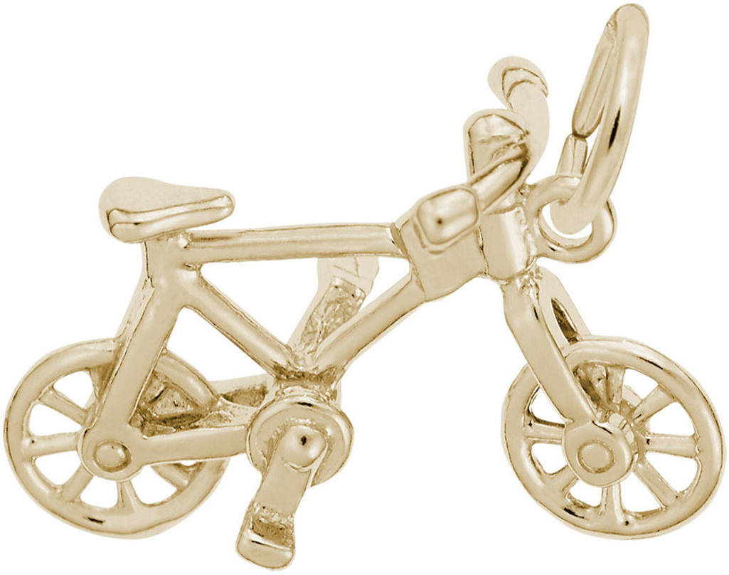 Detailed Bicycle Charm (Choose Metal) by Rembrandt