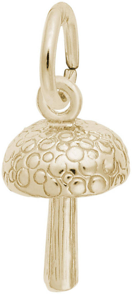 Mushroom Charm (Choose Metal) by Rembrandt