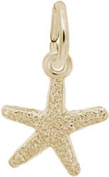 Classic Starfish Charm (Choose Metal) by Rembrandt