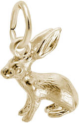 Bunny Charm (Choose Metal) by Rembrandt