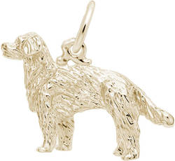 Golden Retriever Charm (Choose Metal) by Rembrandt