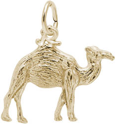 Camel Charm (Choose Metal) by Rembrandt