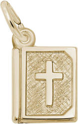 Bible Charm (Choose Metal) by Rembrandt