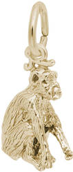 Chimpanzee Charm (Choose Metal) by Rembrandt