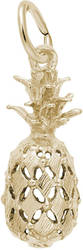 Pineapple Charm (Choose Metal) by Rembrandt