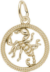 Scorpio Scorpion Charm (Choose Metal) by Rembrandt