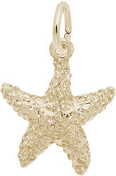 Sea Star Charm (Choose Metal) by Rembrandt