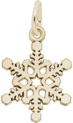 Small Snowflake Charm (Choose Metal) by Rembrandt