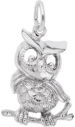 Owl Charm (Choose Metal) by Rembrandt