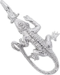 Iguana Charm (Choose Metal) by Rembrandt